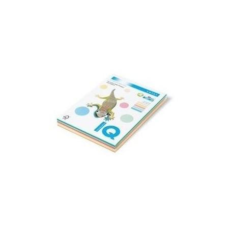 Risma cartoncino A4 in 5 colori assortiti - 160gr 100ff - colori tenui