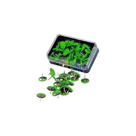 Puntine da disegno colorate ottonate - 50 pezzi verde