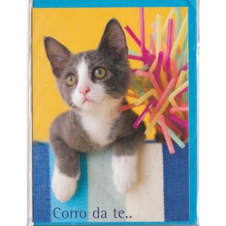 Biglietto Buon compleanno - vari soggetti - Per il tuo compleanno...