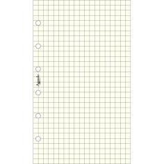 Ricambio fogli a quadri AVORIO 7,7x12,7 ( (50 fogli ) per agenda organizer 50 fogli